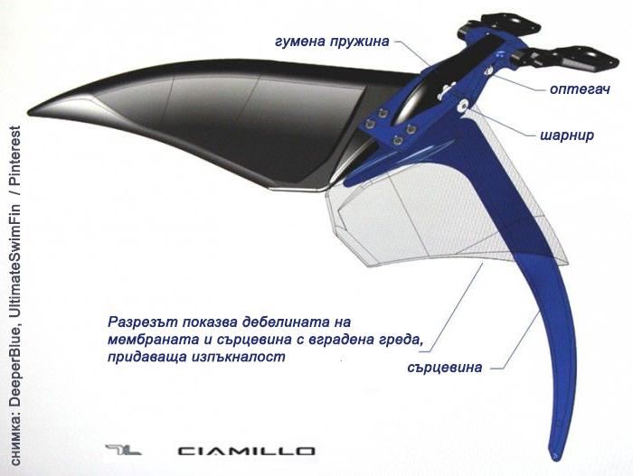 модерен дизайн на плавници